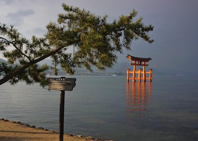 THE TORII - MIYAJIMA