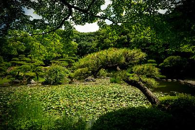 03 Keitakuen Gardens © David Bickerstaff