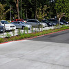 Bioswale in parking lot