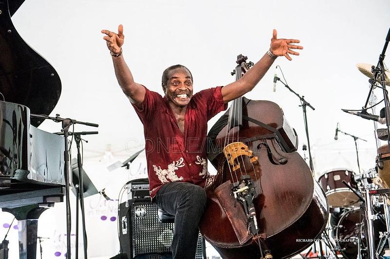 Alex Blake  /  Jazz in the Valley Jazz Festival  / dsc_A3336