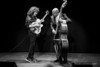 PAT METHENY / CHRISTIAN MCBRIDE / JAMES MOODY DEMOCRACY OF JAZZ FESTIVAL