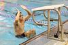 Swimming v Clayton-7