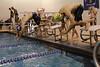 Swimming v Clayton-5