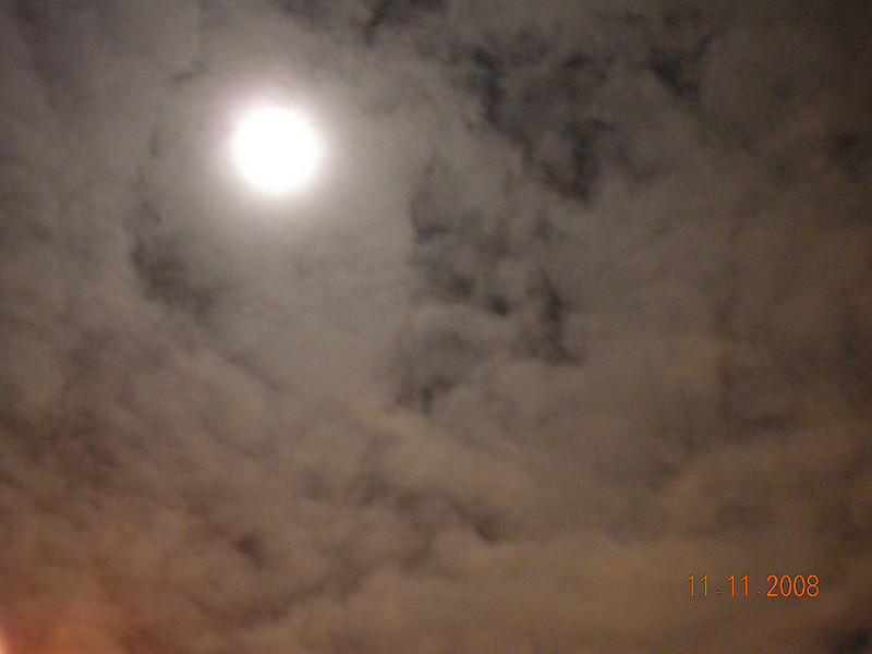 Day 2:11/11/08: Full moon with rings and plenty of clouds. This is the best one I could get, the other ones had high ISO noises or very blurry. The left lower corner is a street lamp.