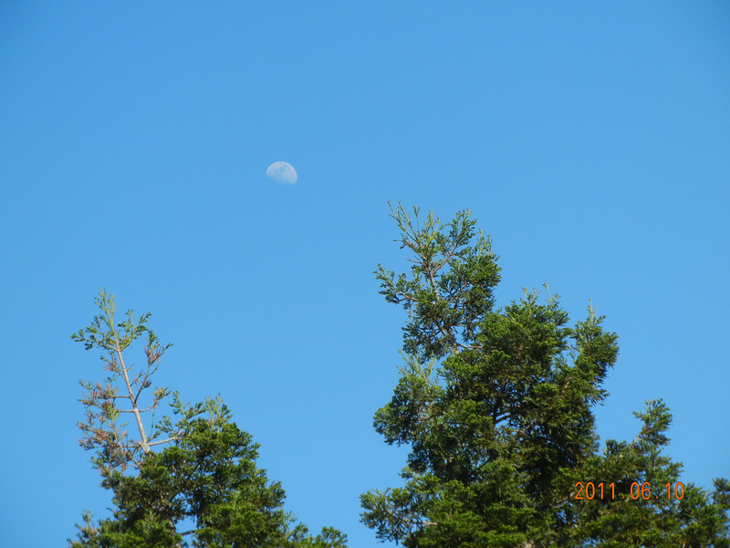 06/10/11 - I think I am still obsessed with the moon.