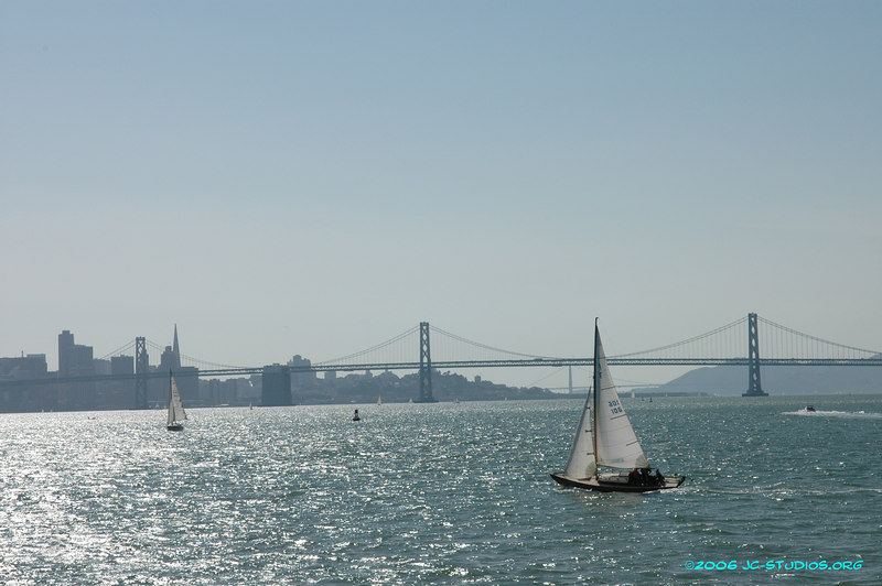 Sailing boats on the bay, San Francisco, CA