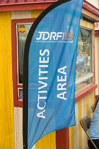 JDRF-6 3 17-3