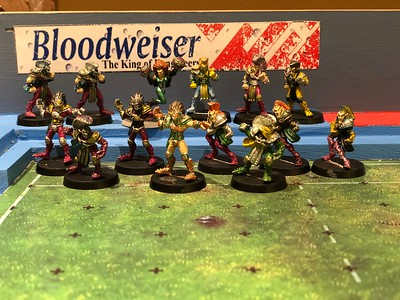 Original High Elf Blood bowl Team painted (might need some touch ups) 75$ Includes Cheerleader