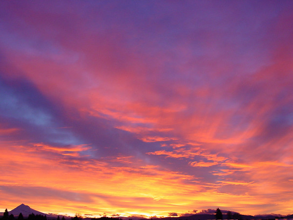 Starting the year off with a great Sunrise! Outside the Office about 7:25 on January 7th.
