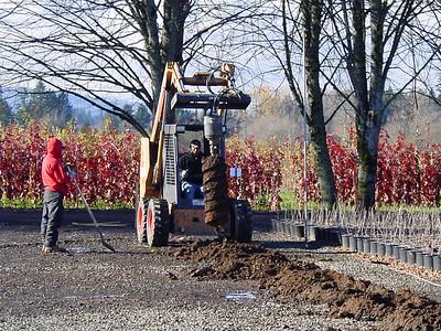 November - so it's time to build greenhouses again! November 20th 2007.