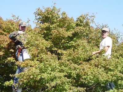 Vasyl & Curtis, Seed Picking - September 29th 2006