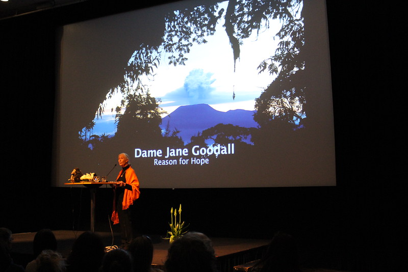 Dr. Jane Goodall's lecture with National Geographic photographer Mattias Klum and Professor Johan Rockström.