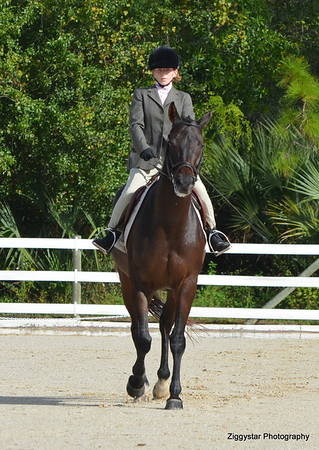 JHA Dressage Series