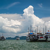 Halong bay cruise boats waiting to take passengers