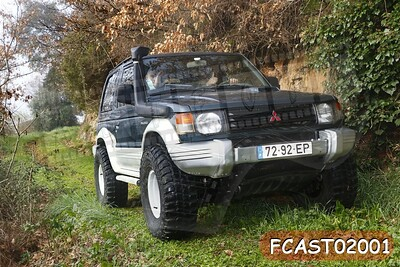FCAST02001