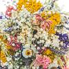 Lucy-Wedding-Photos-317