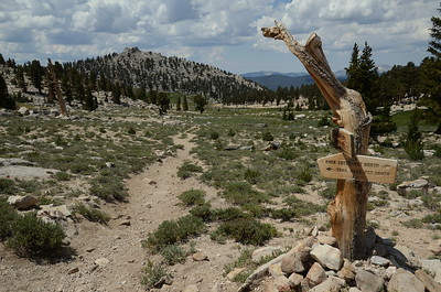We officially joined the Pacific Crest Trail for a bit here at Cottonwood Pass. We're going that way. -->
