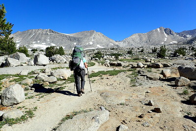 Close to treeline in Upper Basin. Photo by Chuck Haak.