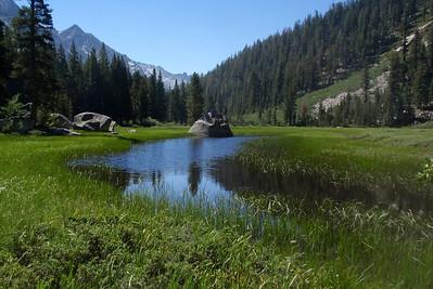Grouse Meadow. Photo by Jill Haak.