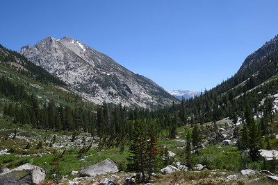 Looking back down LeConte Canyon. This canyon is prone to avalanches and you can see large swaths on the right that have been cleared by avalanches.
