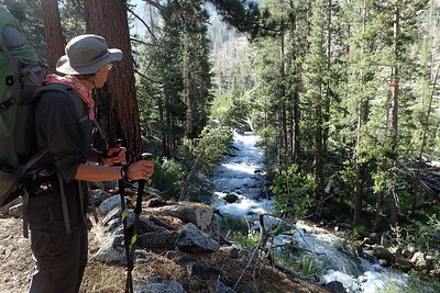 Jill ponders Palisade Creek as it makes its way to its confluence with the Middle Fork Kings River. Photo by Chuck Haak.