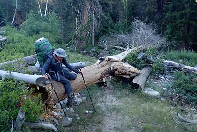 Jill climbing over a fallen log. Photo by Chuck Haak.
