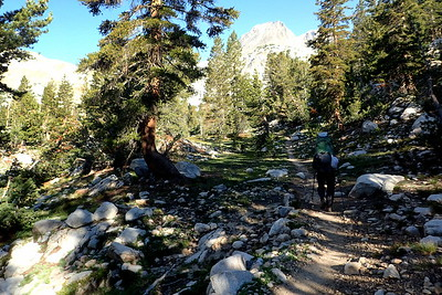 Back on the trail - heading up to Muir Pass, about 4 miles away. Photo by Chuck Haak.