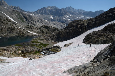 """Mike and Ike"" coming up the snowfield above No Name Lake."