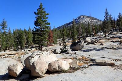Glacial erratics. Photo by Chuck Haak.