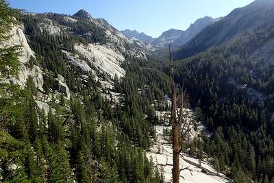 Looking up the canyon of North Fork Mono Creek. Photo by Chuck Haak.
