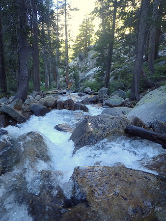 North Fork Mono Creek. Photo by Chuck Haak.