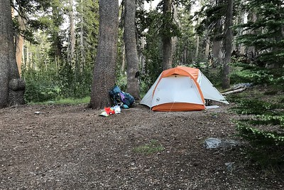 My tent at our Trinity Ponds campsite.