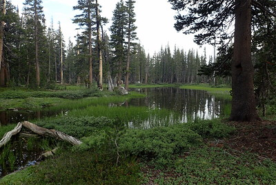 We decided to stop for the night at some ponds near Trinity Lakes that we called, for a lack of a better name, Trinity Ponds. Photo by Chuck Haak.