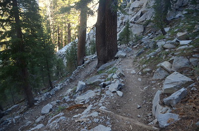 After Rosalie Lake, we hit a long set of switchbacks going down, another reason we were glad we were hiking NOBO.