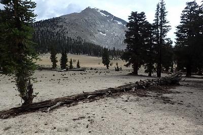 Mt. Guyot and Guyot Flat. Photo by Chuck Haak.
