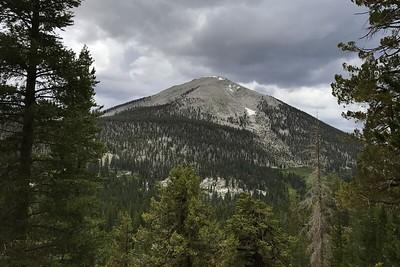 Mt. Guyot