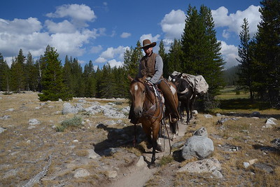Our last mule train of the JMT. :(