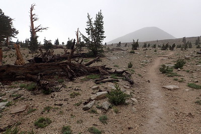 "When we felt it was safe, we started heading up to the Bighorn Plateau. It was still raining and visibility was poor, which was very disappointing since so many JMT hikers describe the Bighorn Plateau as ""magical."" Photo by Chuck Haak."