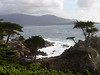 17 Mile Drive View