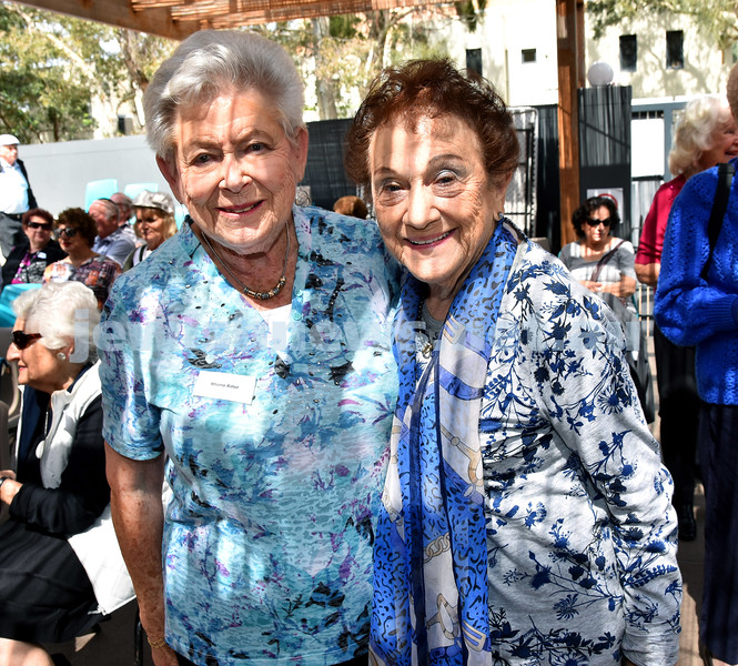 JNF Seniors morning tea in the Mizrachi Synagogue Succah. Rhona Adler (left), Brenda Abkin. Pic Noel Kessel