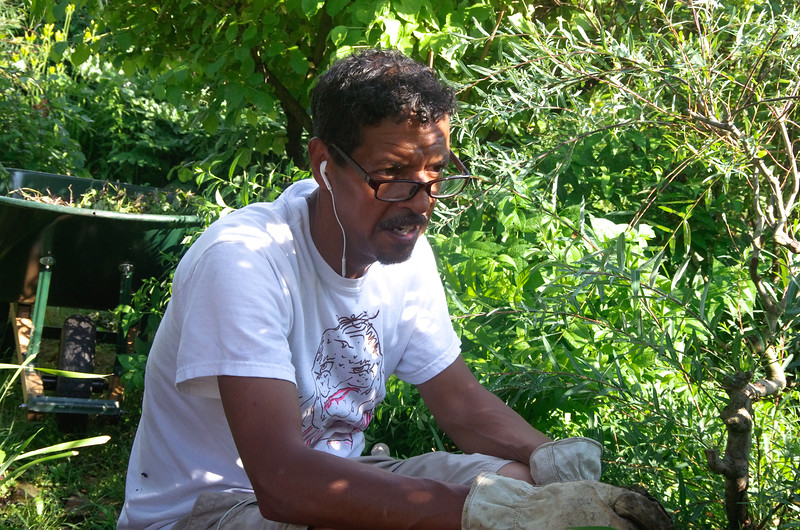 June 29, 2016 Boston, MA Phillip Lindsey, garden owner for over a decade, enjoys gardening after work.
