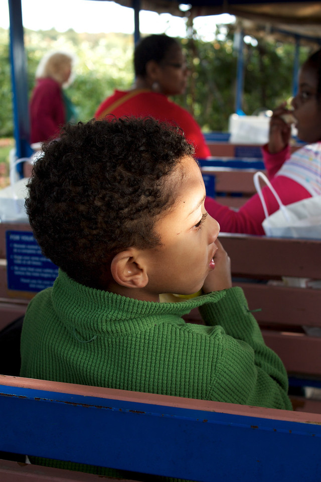 Anthony Gordon rides a train through Lookout Farm Apple Orchards in Natick, MA on October 8th, 2012.