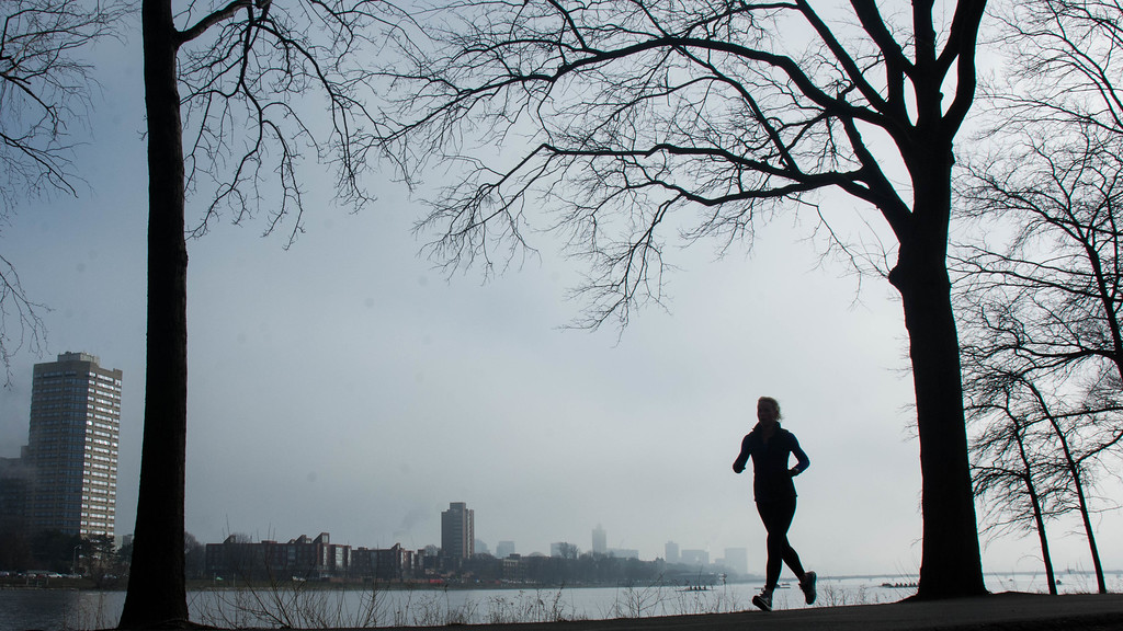 """A runner on the Esplanade along the  Charles River Wednesday morning. This is a segment from the """"24 hours, two bridges"""" project."""