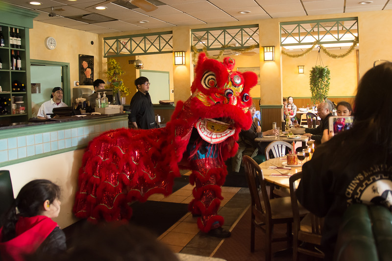Performers from Calvin Chin's Marshall Arts Academy perform a Lion Dance at Le's Vietnamese Cuisine in Allston, Massachusetts. Chin's academy performed at restaurants around Allston in celebration of the Lunar New Year.