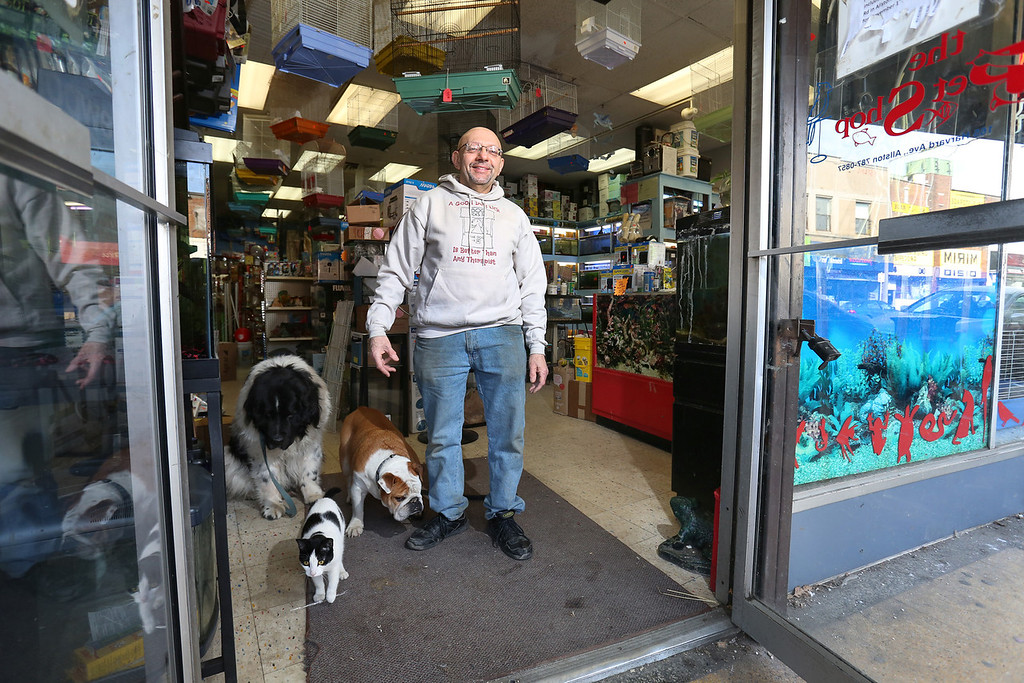 March 1, 2014. Jim, owner of a Pet Shop on Harvard Avenue in Allston, Mass. poses for a portrait with his pets. Photo by Dominique Riofrio.