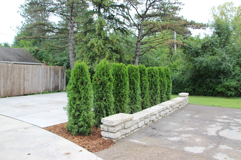 Retaining wall for parking area
