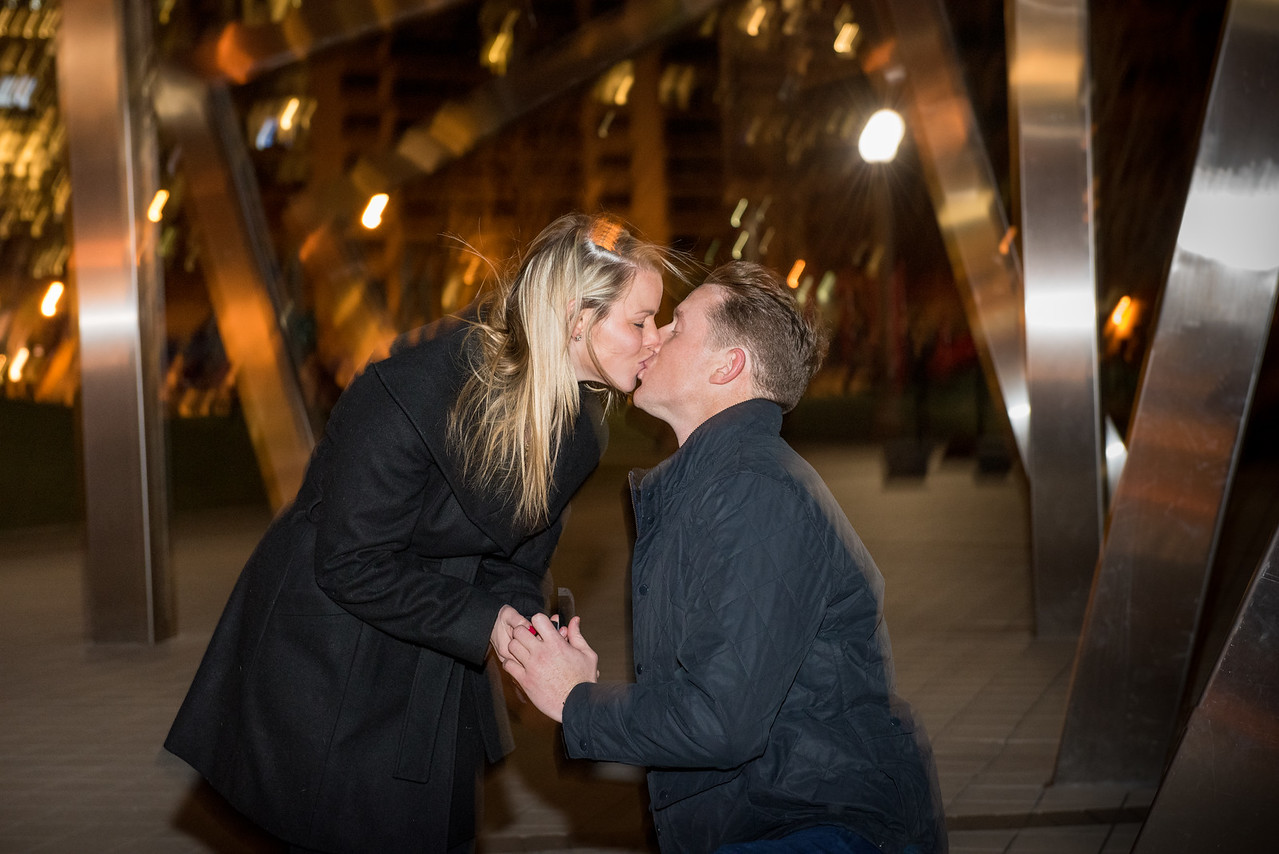 Alyssa & Steve Get Engaged - John O'Neill (33 of 102)