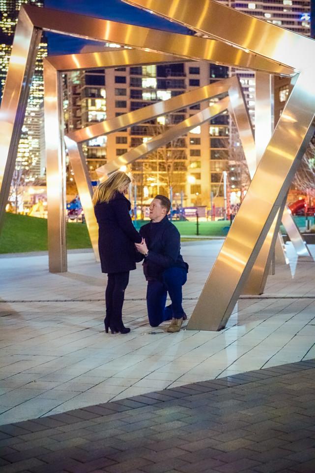 Alyssa & Steve Get Engaged - John O'Neill (16 of 102)