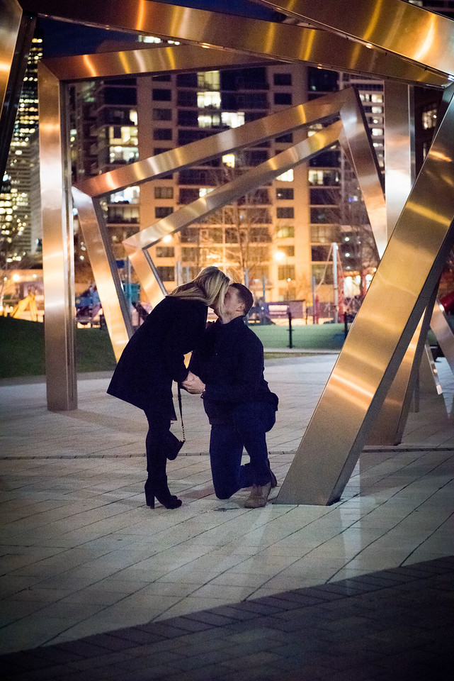 Alyssa & Steve Get Engaged - John O'Neill (20 of 102)