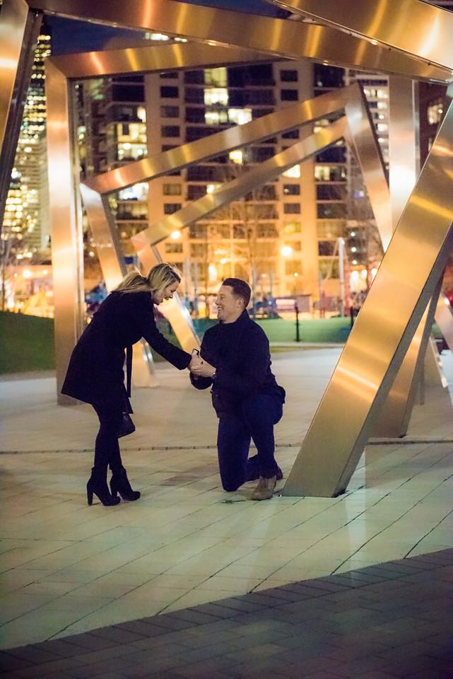 Alyssa & Steve Get Engaged - John O'Neill (18 of 102)